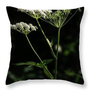 Queen Anne Lace Throw Pillow