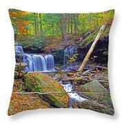 R B Ricketts Falls In Autumn Throw Pillow