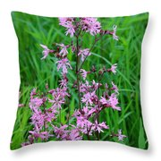 Ragged Robin Throw Pillow