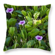 Railroad Vine Throw Pillow