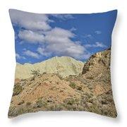 Rainbow Basin Throw Pillow