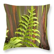 Rainbow Eucalyptus And Fern Throw Pillow