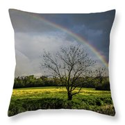 Rainbow Fields Throw Pillow