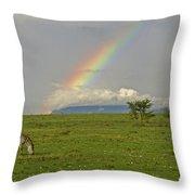 Rainbow Over The Masai Mara Throw Pillow