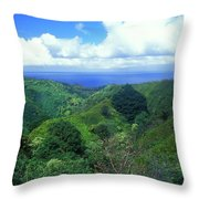 Rainforest Near Hana Throw Pillow