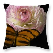 Ranunculus And Butterfly Throw Pillow