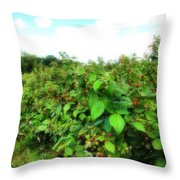 Raspberry Fields 2  Throw Pillow