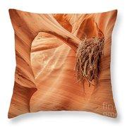 Rattlesnake Canyon, Page, Arizona Throw Pillow