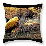 Ravine Throw Pillow