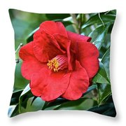 Really Really Red Throw Pillow