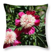 Red And Pink Peony Throw Pillow