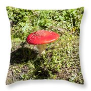Red And White Potted Toadstool Throw Pillow