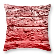 Red Brick Wall Throw Pillow