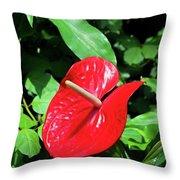 Red Flamingo Flower II Throw Pillow