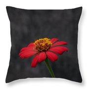 Red Flower 1 Throw Pillow