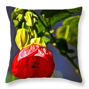 Scarlet Mallow At Pilgrim Place In Claremont-california- Throw Pillow
