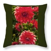 Red Flower Close Up Throw Pillow