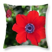 Red Anemone Coronaria 1 Throw Pillow