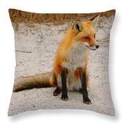 Red Fox 3 Throw Pillow
