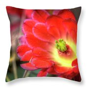 Red Hedgehog Throw Pillow