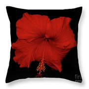 1- Red Hibiscus Throw Pillow