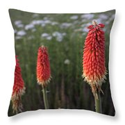Red Hot Pokers Throw Pillow