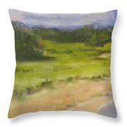 Red River Marsh Throw Pillow