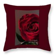 Red Rose Macro 6 Throw Pillow