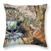 Red-tailed Hawk -5 Throw Pillow