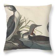 Red-throated Diver Throw Pillow