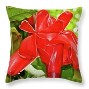 Red Tropical Flower In Huntington Botanical Gardens In San Marino-california Throw Pillow