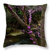Redbud And River Throw Pillow