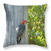 Redheaded Woodpecker Throw Pillow by Marie Bulger