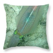 Reef Squid Throw Pillow