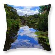 Reflected View 2 Throw Pillow