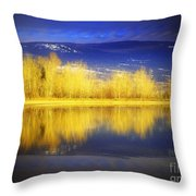 Reflections In Gold Throw Pillow