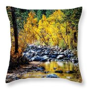 Reflections Of Gold Throw Pillow