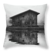 Reflective Morning Throw Pillow
