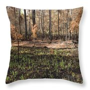 Regrowth After A Controlled Burn Throw Pillow