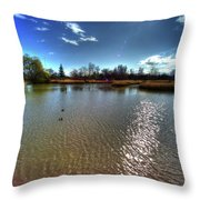 Reifel In Winter 7 Throw Pillow