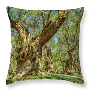Relaxing Planes Trees Arbor Throw Pillow