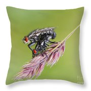 Reproduction - At The Height Of Bliss Throw Pillow