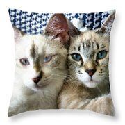 Rescued And Spoiled Throw Pillow