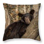 Resting Bear Throw Pillow