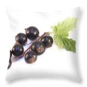 Ribes Nigrum Isolated Throw Pillow