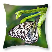 Rice Paper Butterfly 7 Throw Pillow