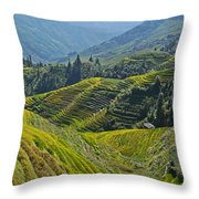 Rice Terraces In Guilin, China  Throw Pillow