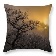 Rime Ice And Fog At Sunset - Telephoto Throw Pillow