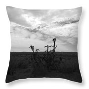 Rio Rancho Throw Pillow
