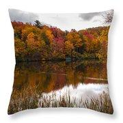 Ripshin Lake Throw Pillow
